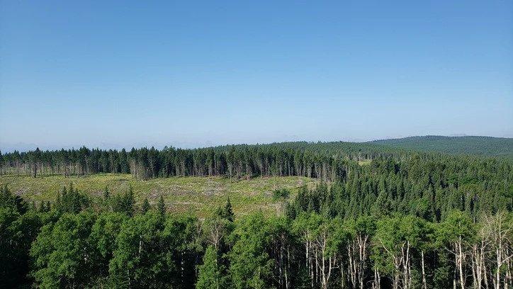 Hansen Land Brokers - Grazing Land