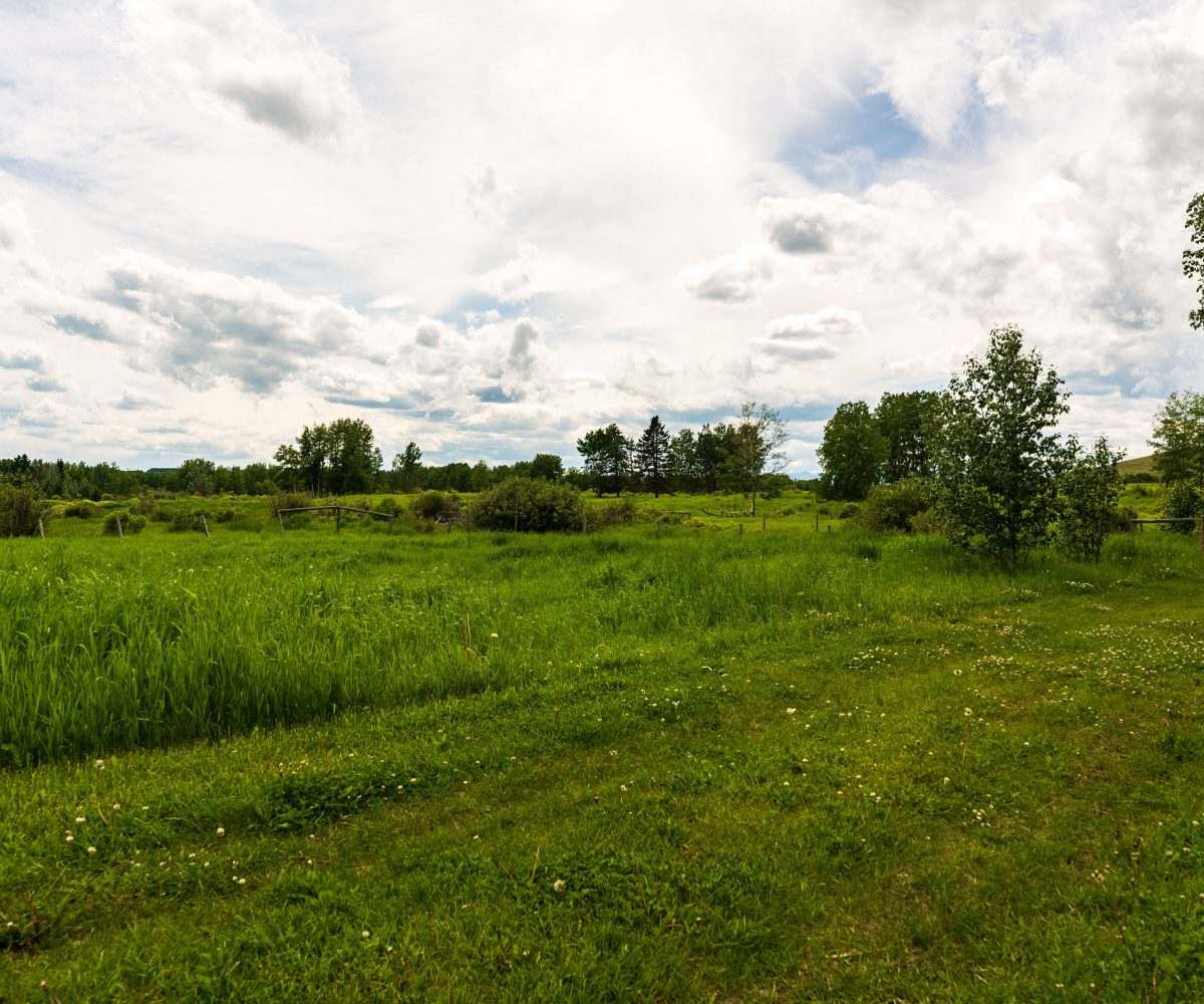 Hansen Land Brokers - Alberta Land Auction