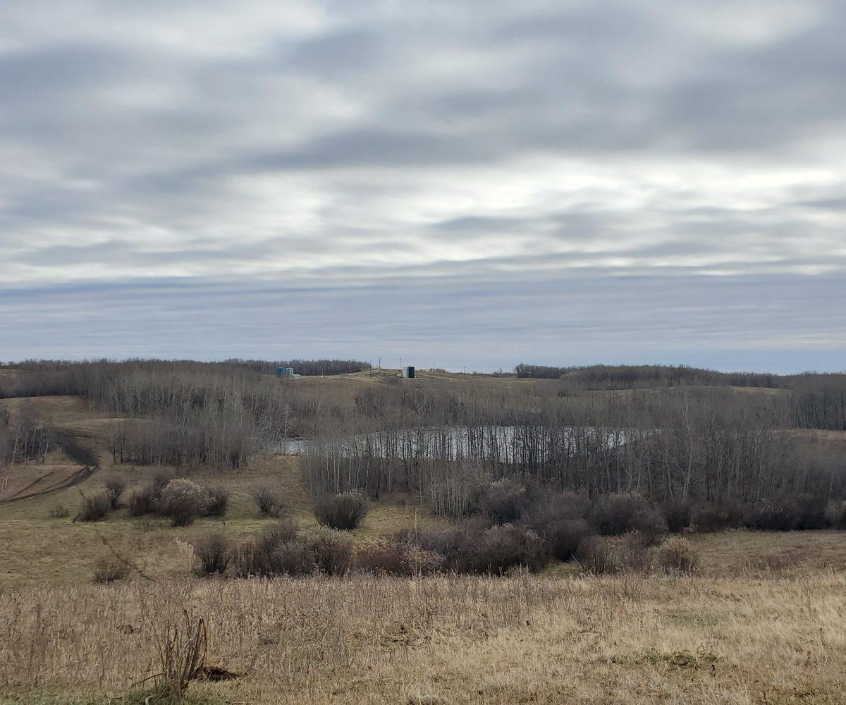 Hansen Land Brokers - Elnora - 40 Minutes East of Innisfail