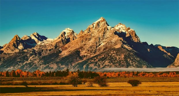 Hansen Land Brokers - Everything You Should Know About Foreign Investment in Alberta Land