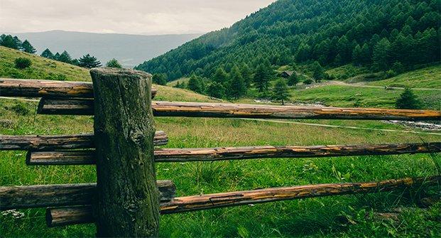 Hansen Land Brokers - The Fencing Act