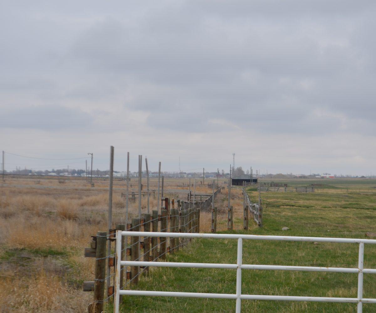 Hansen Land - Western Feed Lots