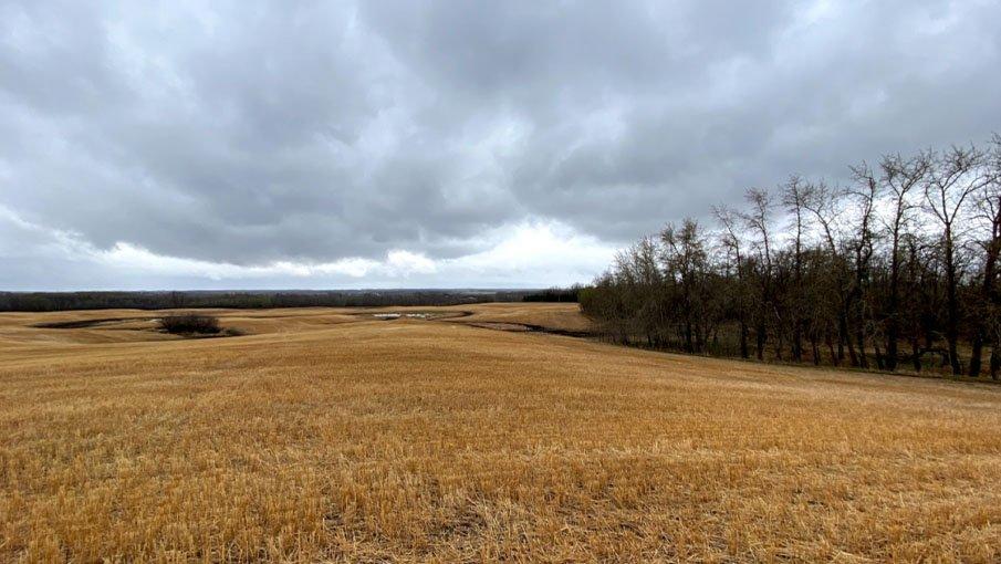 Hansen Land Brokers - 160 Acre Development_5