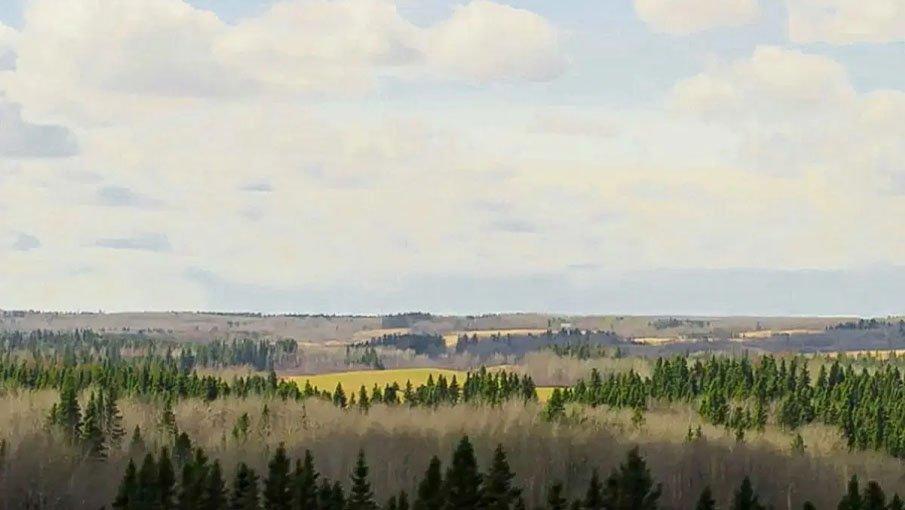 Hansen Land Brokers - 173_6