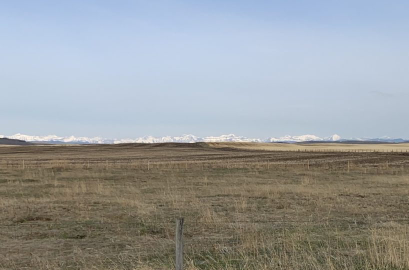 Hansen Land Brokers - Interesting Quarter Section West of High River Cover
