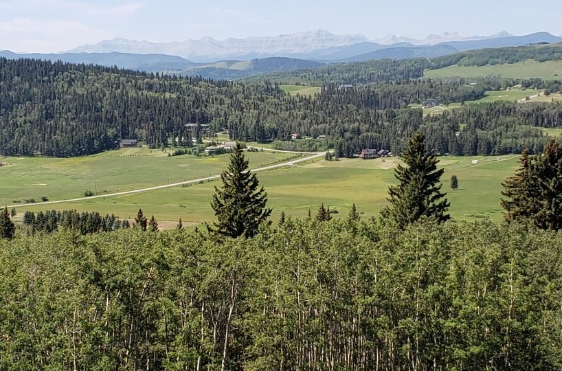 Land For Sale - 160 Acres South West of Priddis 3