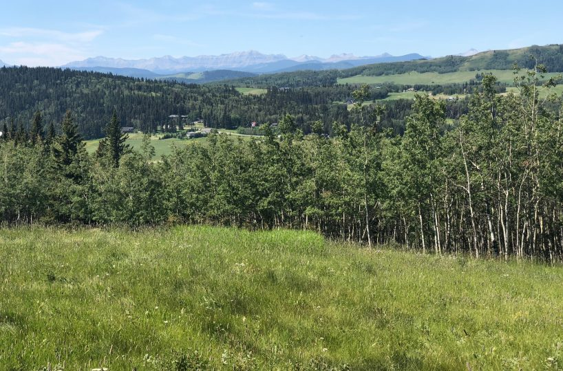 Land For Sale - 160 Acres South West of Priddis 5