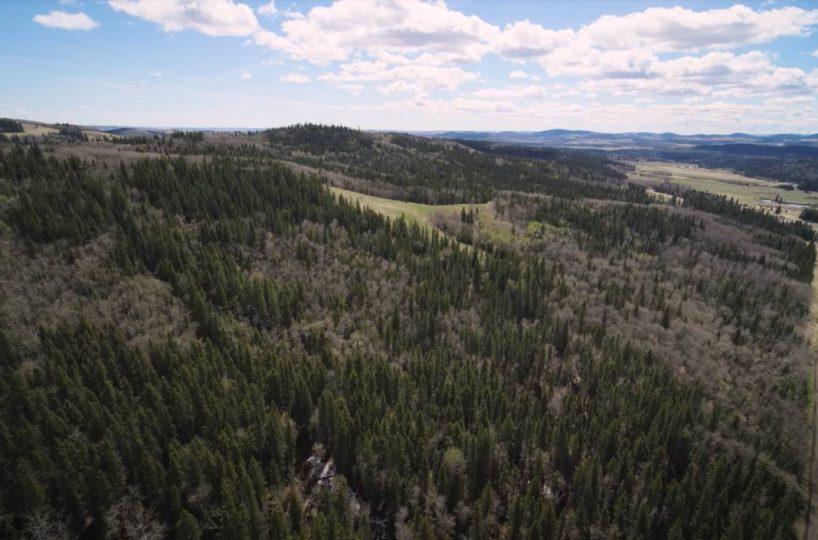 Hansen Land Brokers - Land For Sale - 160 Acres South West of Priddis