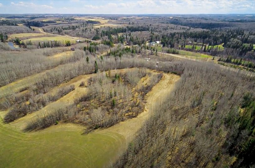 173 Acres - Birchwood County Land For Sale 3