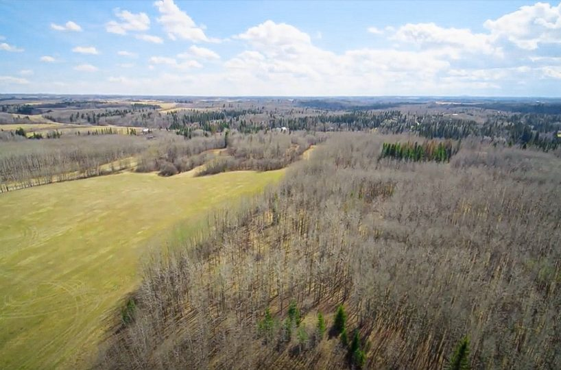 173 Acres - Birchwood County Land For Sale 5