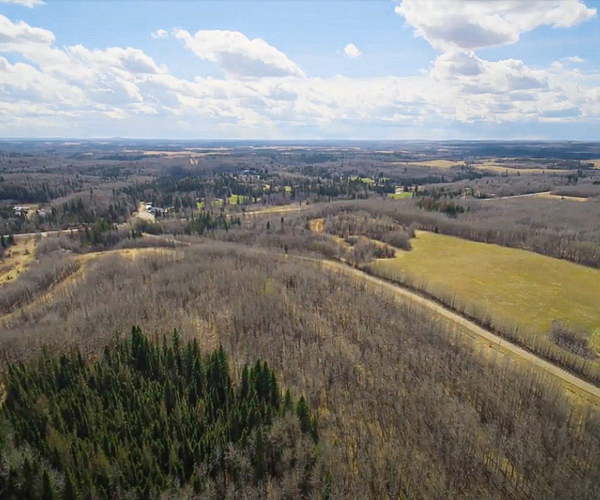 173 Acres - Birchwood County Land For Sale 7