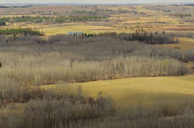 173 Acres - Birchwood County Land For Sale 10