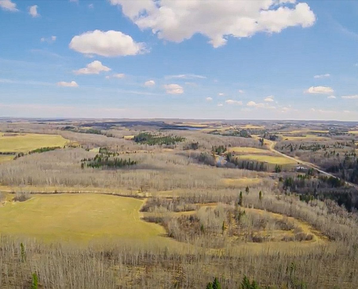173 Acres - Birchwood County Land For Sale 11