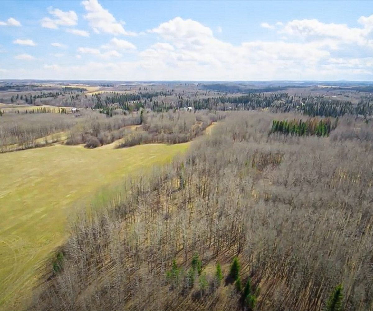 173 Acres - Birchwood County Land For Sale 12