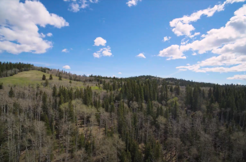 Land For Sale - 160 Acres South West of Priddis