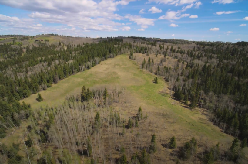 Land For Sale - 160 Acres South West of Priddis 17