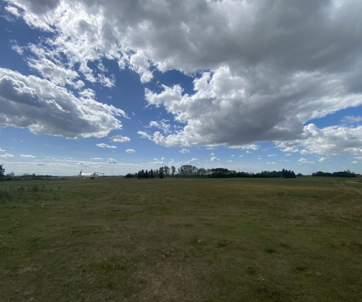 Hansen Land Brokers - Camrose County