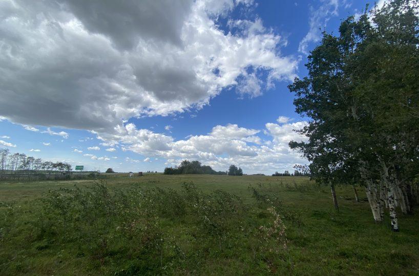 Hansen Land Brokers - Camrose County - Cover