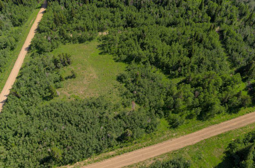Hansen Land Brokers - Heritage Ranch Auctions - 6