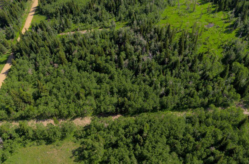 Hansen Land Brokers - Heritage Ranch Auctions - 7