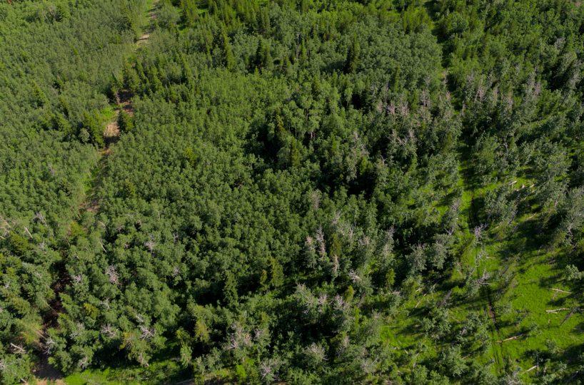 Hansen Land Brokers - Heritage Ranch Auctions