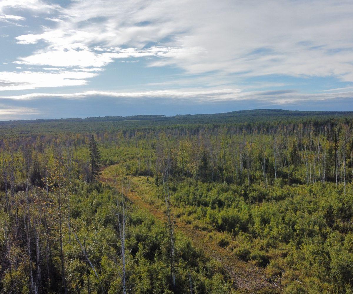 Hansen Land Brokers - 320 Acres West Of Lil Smoky - 1