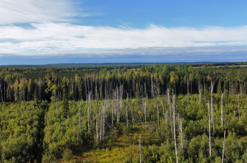 Hansen Land Brokers - 320 Acres West Of Lil Smoky - Cover